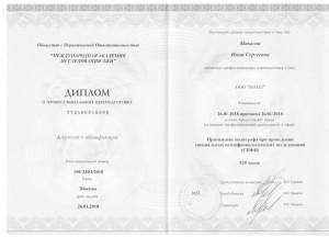 Диплом Школа Коровина1